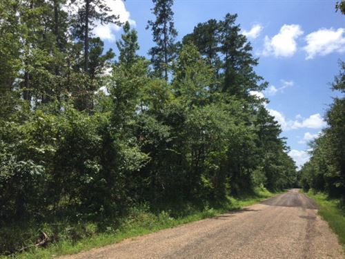 Rural Land For Sale North Pike Coun : Ruth : Pike County : Mississippi