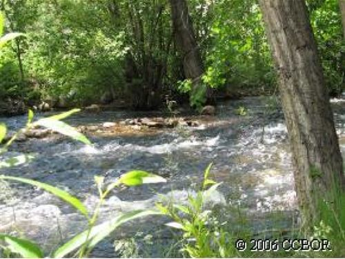 2693845 - Beautifully Treed : Salida : Chaffee County : Colorado