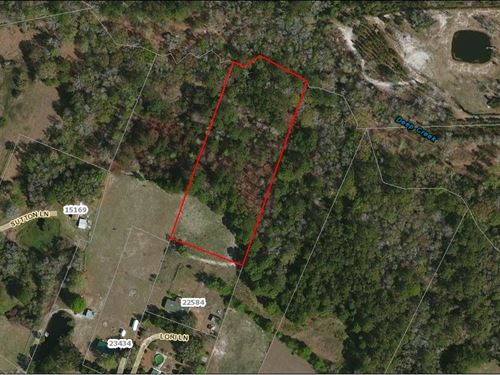 2.6 Acres- Lori Lane : Hilliard : Nassau County : Florida