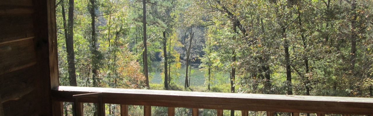 Georgeous Riverfront Cabin Bargain : Juliette : Jones County : Georgia