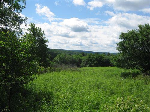 23 Acres Near Corning Borders State : Orange : Schuyler County : New York