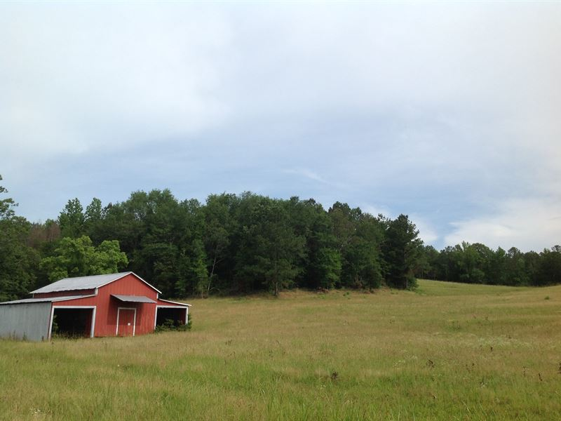 Lost Creek Farm : Sulligent : Lamar County : Alabama