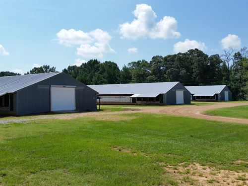 Tolleson Poultry-Three House Farm : Carthage : Leake County : Mississippi