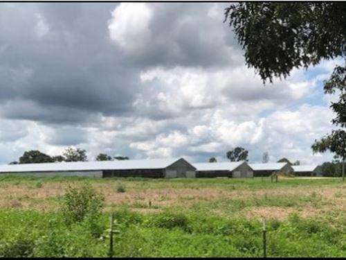 30 Acres In Jasper County Poultry F : Stringer : Jasper County : Mississippi