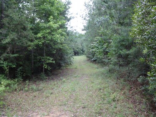 26 Acres In Forrest County : Petal : Forrest County : Mississippi