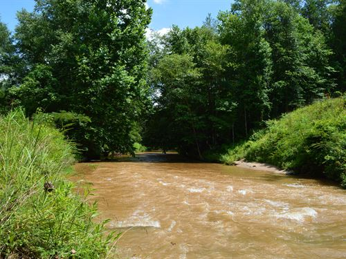27 Acres Along Lawson Fork Creek : Spartanburg : South Carolina