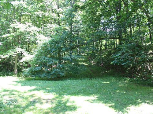 Jockey Hollow Rd - 17 Acres : Flushing : Harrison County : Ohio