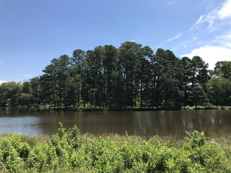 Winterville Farm : Winterville : Clarke County : Georgia