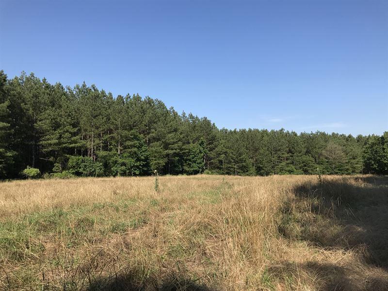 Maxeys Timber Tract : Maxeys : Oglethorpe County : Georgia