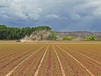 Shavano Valley Farm : Montrose : Montrose County : Colorado