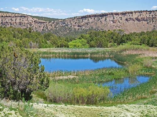 The Moore Ranch : Montrose : Colorado