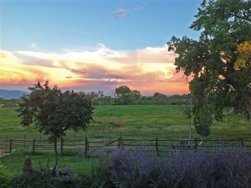 Spring Creek Luxury Estate : Montrose : Colorado