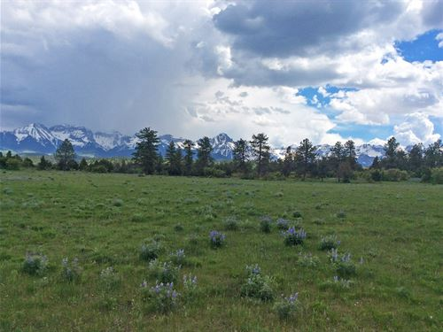 Mt, Sneffels Ranch : Ridgway : Ouray County : Colorado