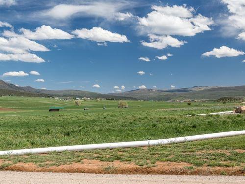 Red Rock Canyon Ranch : Montrose : Colorado