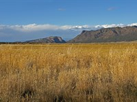 Bostwick Park Ranch : Montrose : Montrose County : Colorado