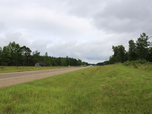 44.3 Acres In Covington County : Mount Olive : Covington County : Mississippi