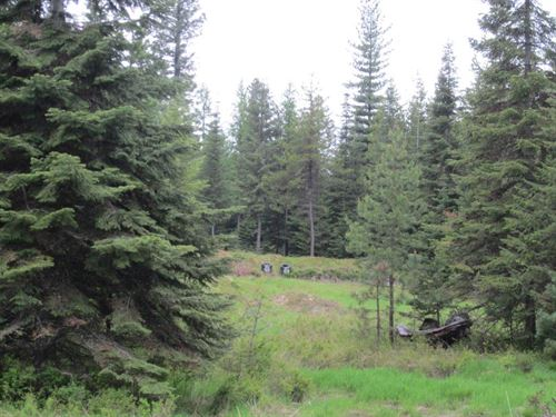 Copper Ridge Lot : Trout Creek : Sanders County : Montana