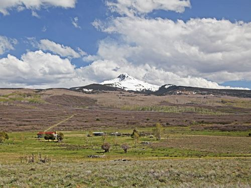 Nelson Springs Ranch : Norwood : San Miguel County : Colorado