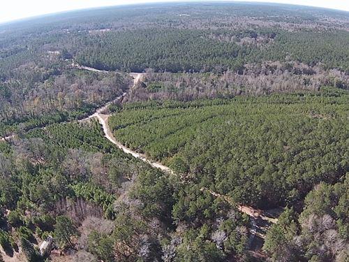 48 B Acres Fm 942 Camden, Texas : Camden : Polk County : Texas