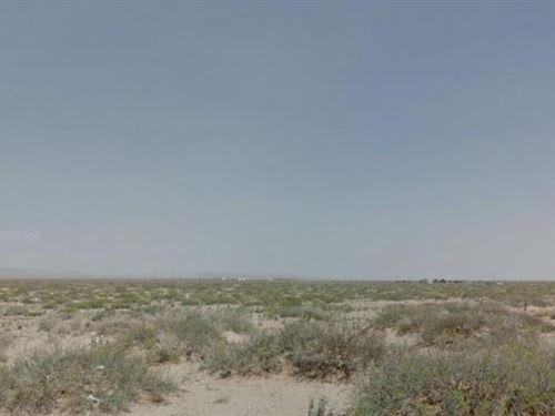 El Paso County, Tx $22,000 Neg : El Paso : Texas