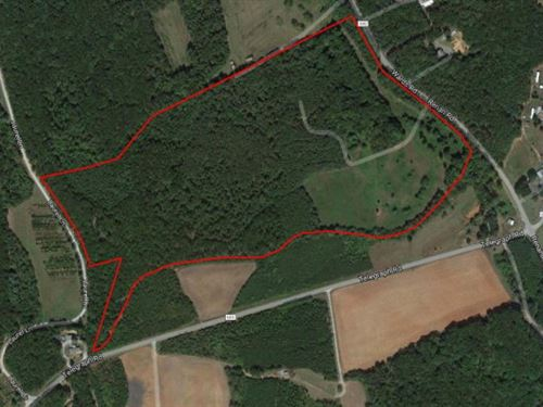 Nice Laying Land In Hurt, Va : Hurt : Pittsylvania County : Virginia