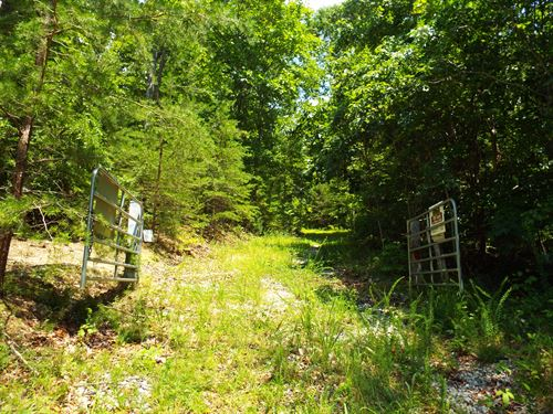 155 Acres Of Unspoiled E Tn : Kingston : Roane County : Tennessee