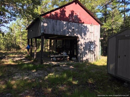 142+/- Ac Hunting Tract : Poplarville : Pearl River County : Mississippi