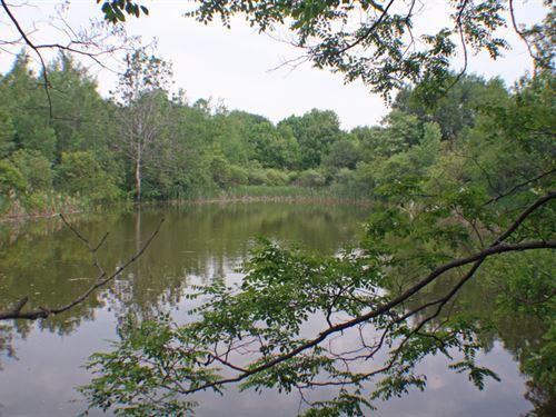 10 Acre Springwater Ny Hemlock Lake : Springwater : Livingston County : New York