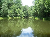 Franklin Co., Ga. Farm Land W/Pond : Lavonia : Franklin County : Georgia