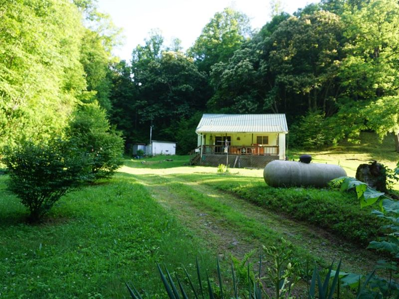 39 Acres M/L 1.5 Story House : Clay : Clay County : West Virginia