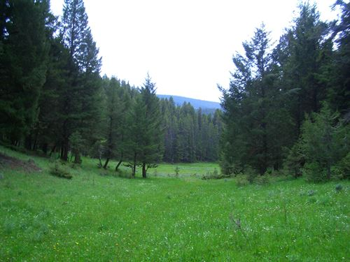 Surrounded By Forest Service Land. : White Sulphur Springs : Meagher County : Montana
