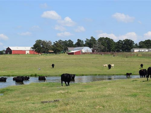 Maverick Ranch 738 +/- Acres : Hulbert : Cherokee County : Oklahoma