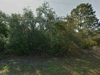 .23 Acres In Citrus Springs, FL : Citrus Springs : Citrus County : Florida