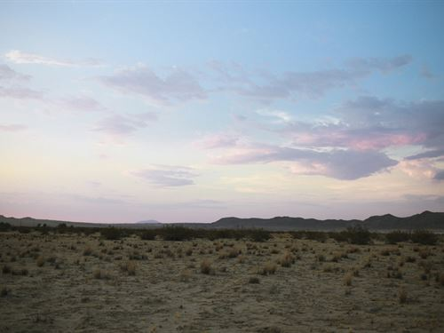 Amazing Joshua Tree Sunsets : Joshua Tree : San Bernardino County : California