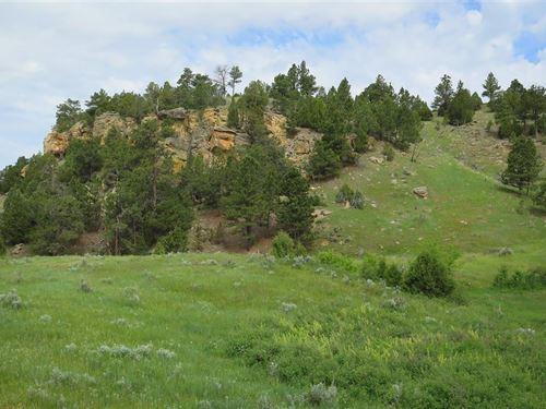 Douglas Canyon : Sundance : Crook County : Wyoming