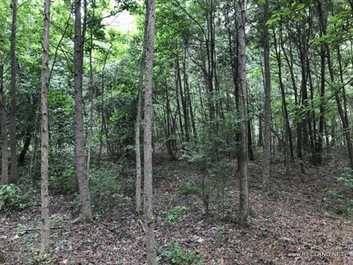 40 Ac - Wooded Tract For Home Site : White Hall : Jefferson County : Arkansas