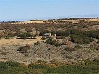 Grazing & Hunting : Montrose : Montrose County : Colorado