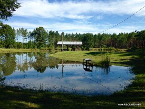 120 Ac - Timberland, Hunting With C : Chatham : Jackson Parish : Louisiana