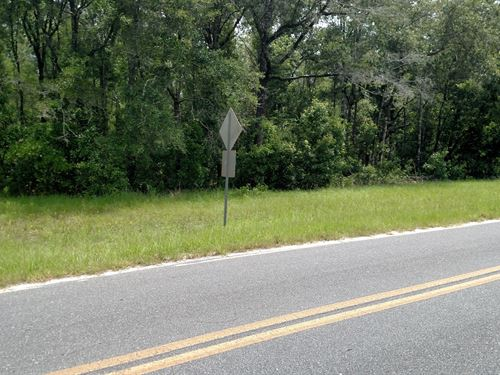 High Dry Acreage-Wooded : Branford : Suwannee County : Florida