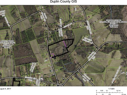 3 Tracts Sell As Whole Or Subdivide : Greenevers : Duplin County : North Carolina