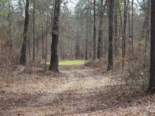 Reduced, Must See Turnkey Hunting : Vienna : Dooly County : Georgia