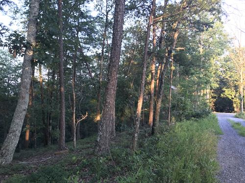 5.94 +/- Wooded Acres, Gordon Co. : Ranger : Gordon County : Georgia