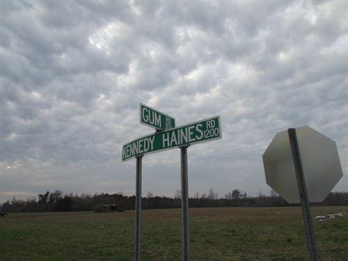 Hutchison-Coleman Farm : Pamplico : Florence County : South Carolina