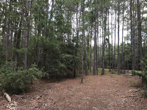 Horse Creek Hideaway : Millen : Jenkins County : Georgia