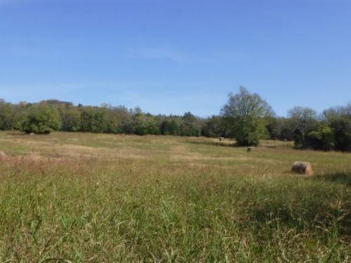 65 Ac Pastures, Creeks, & Springs : Alexandria : Dekalb County : Tennessee