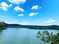 Lakefront Estate With Boat Slip : Loudon : Loudon County : Tennessee