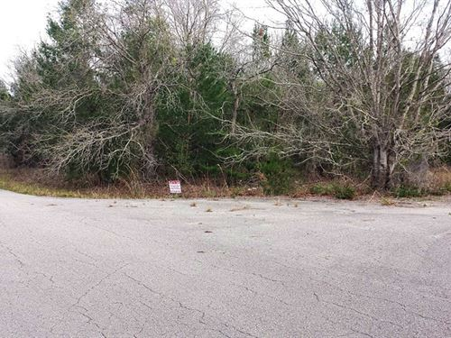 Half Acre Residential Lot Near Lake : Ocklawaha : Marion County : Florida