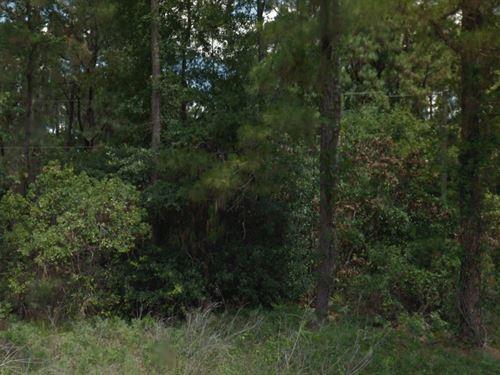 .23 Acres In Sebring, FL : Sebring : Highlands County : Florida