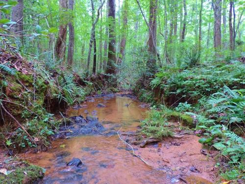 Creek, Timber, & Open Land : Elberton : Elbert County : Georgia