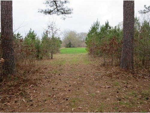48.5 Acres In Hinds County : Raymond : Hinds County : Mississippi
